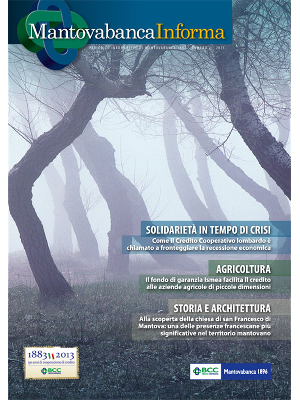 Mantovabanca Informa - 2013